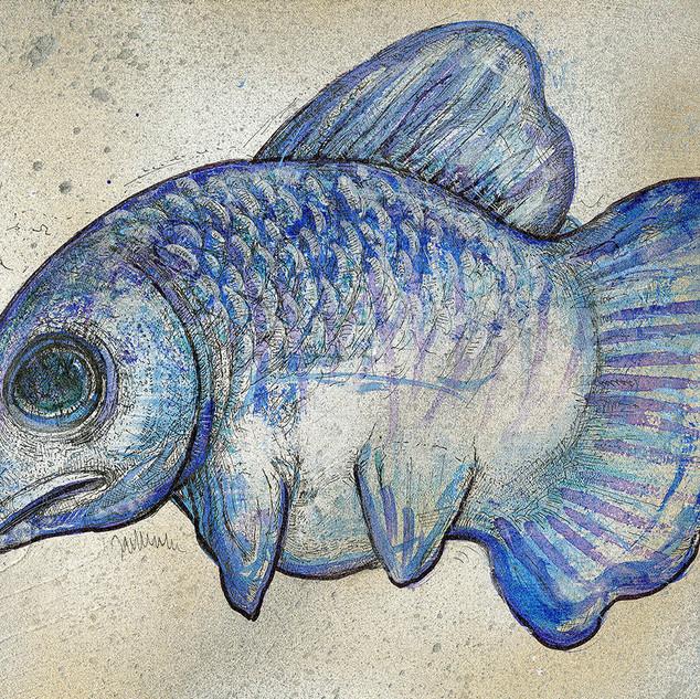 Snouty Blue Fish