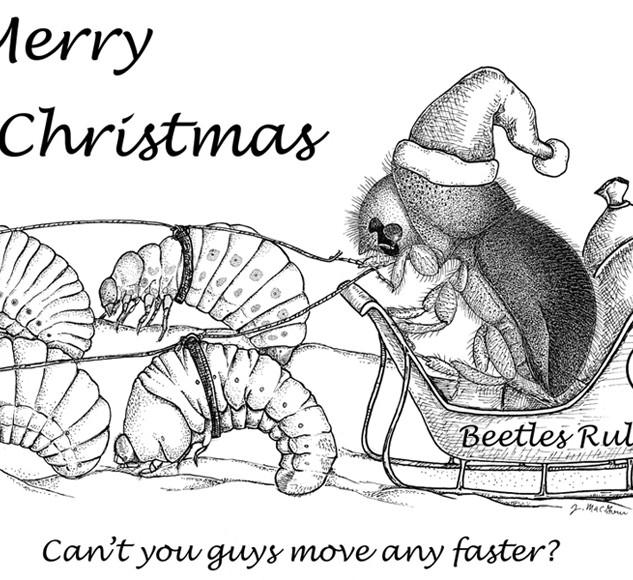 2005 Christmas card