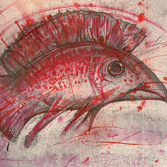 Red Bird Fish