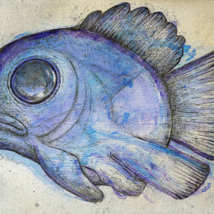 Melancholy Blue Fish.