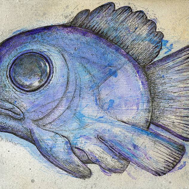 Melancholy Blue Fish.