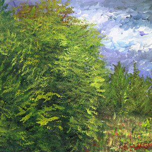 Sessums Landscape