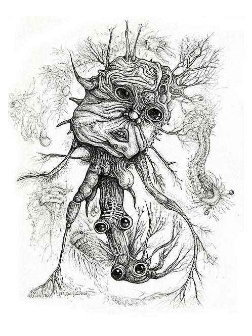 Forlorn Mandrake
