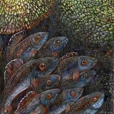Inquisitive Fish