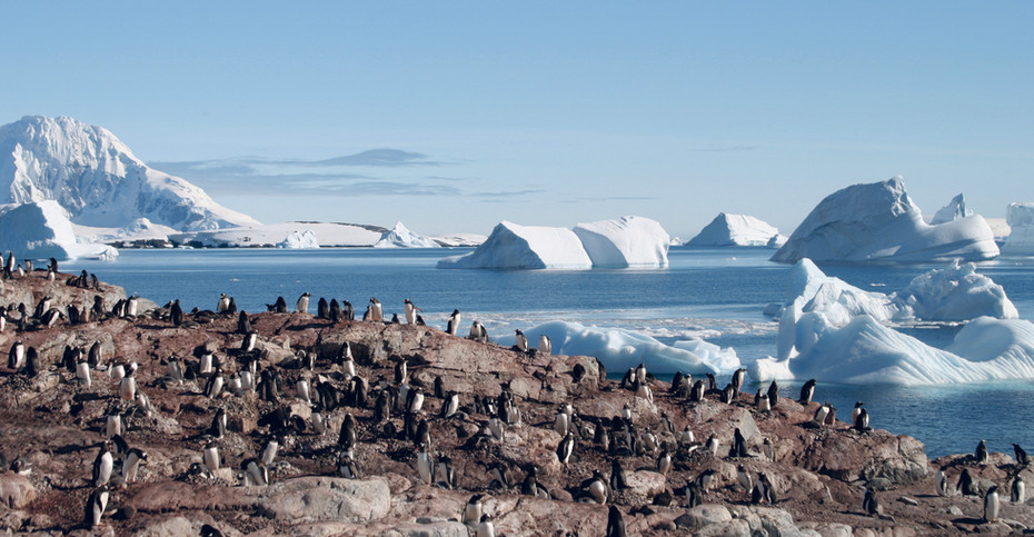 Visions  of the Antartica