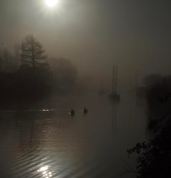 Fog on the River Frome, Wareham