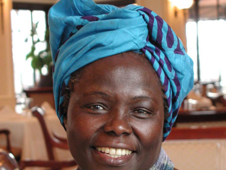 First Leaves & Wangari Maathai