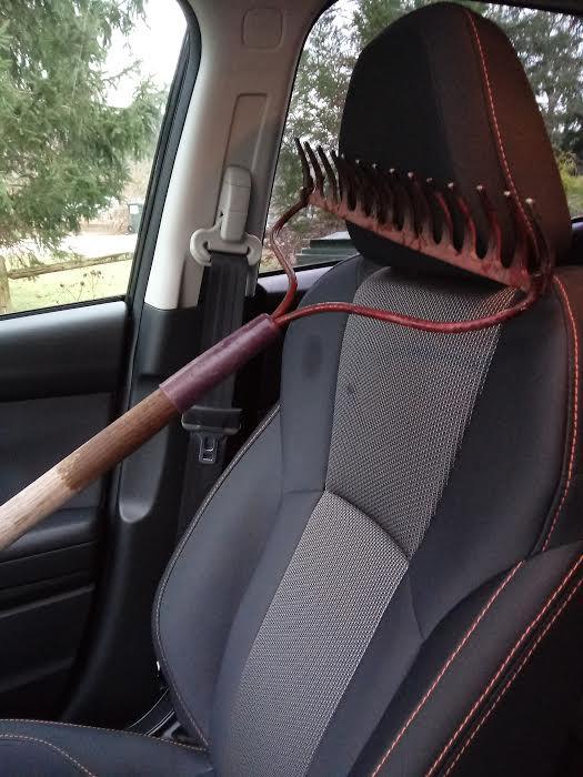 rake riding shotgun