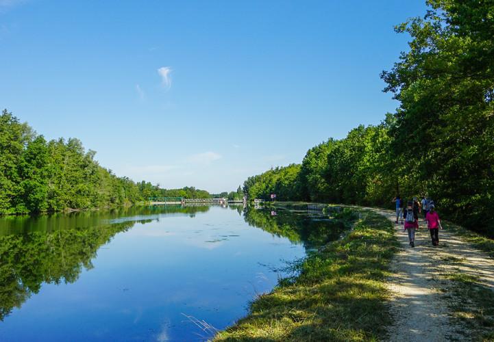 L'Yonne à Bonnard