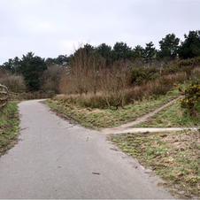 the clay trails many paths.JPG