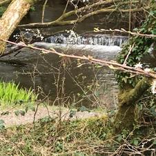footpath 18 lower molinis water 2.jpg