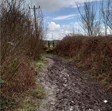 muddy footpatch18.JPG