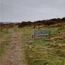 Caerloggas Path.JPG