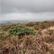 great views caerloggas downs towards bod