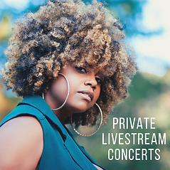 Private Livestream Concerts.png