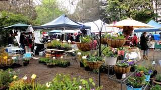 Grantville Market