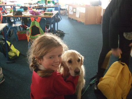 Visit from the Dogs Trust