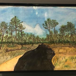 Dakota Access Pipeline by Evan Diaz