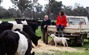 Allen and Lizette Snaith with cows
