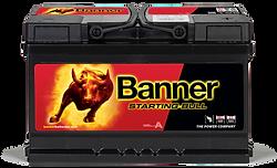 Banner Starting Bull
