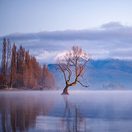 NZ Landscape photo