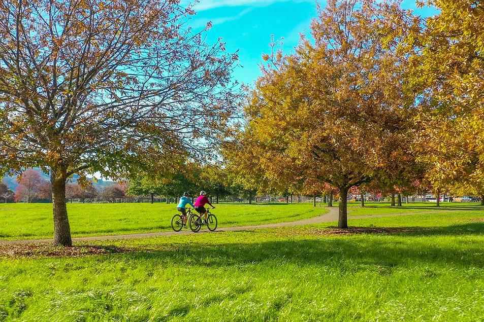 cycle-pic-oaks.jpg