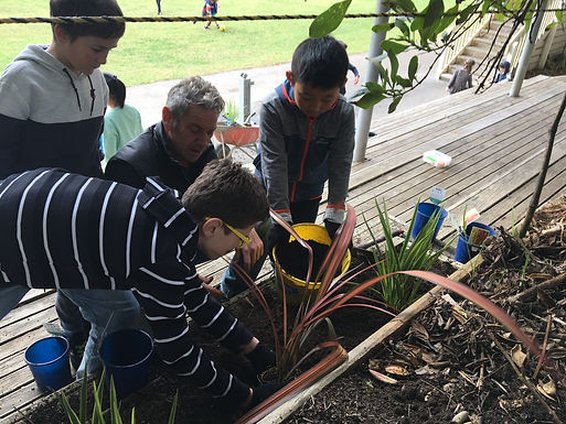 Manaakitanga: We are kind and respectful to others and our environment