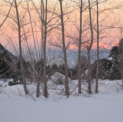Winter Sunrise2 2010.jpg