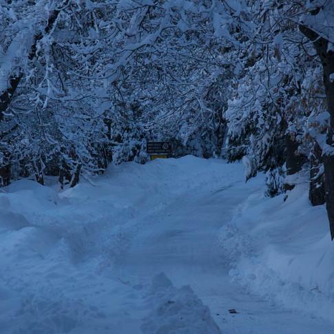 Falls Rd. winter.jpg