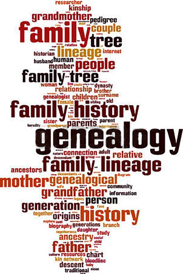 genealog