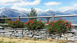 Chalet Lisa Nendaz garden