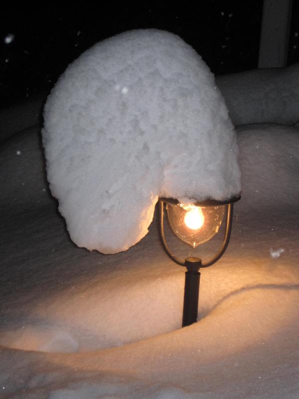 Let it snow in Nendaz at Chalet lisa Nendaz