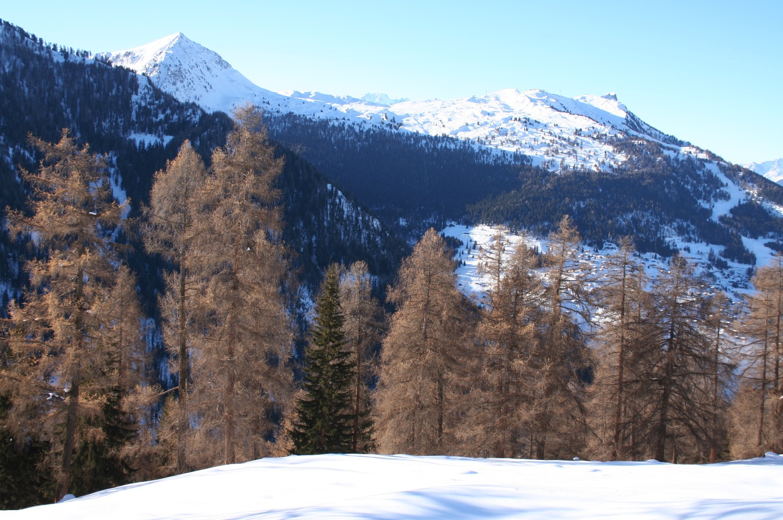 Panoramic views chalet lisa rhone valley