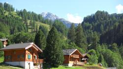 Mountain meadows Switzerland Nendaz Valais