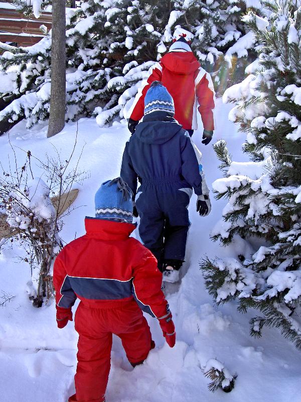 Kids skiing in Swiss Alps