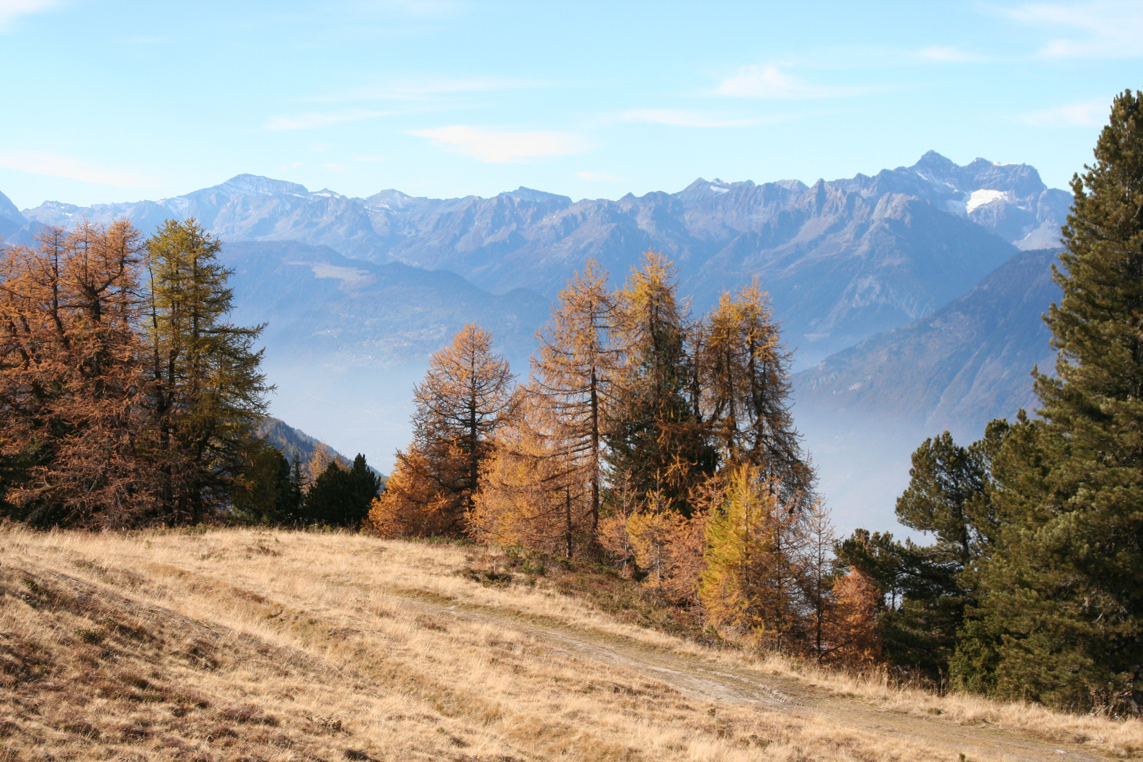 Autumn Valais