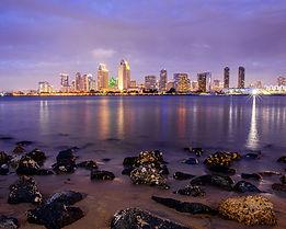 San Diego Favs 2020-20 copy.jpg