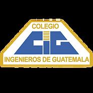 colegio de ingenieros.png