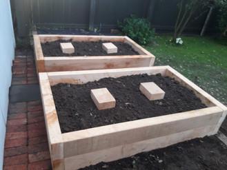 Macrocarpa garden beds