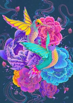Elle Dhita - Hummingbirds