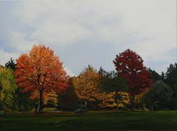 Fall, Van Treight Park
