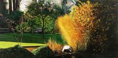 Sunlight, Government House Garden.jpg