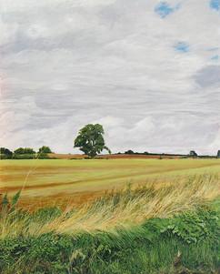 September Hedgerow