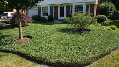 Maintained Residential Property - Pacocha Landscaping Services