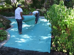 pacocha-fitting-seed-germination-blanket