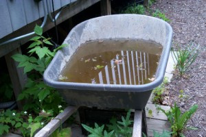 wheelbarrel full of water