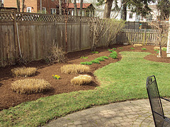 Spring Cleanup - Pacocha Landscaping Services, Inc.