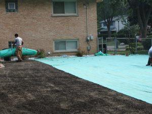 pacocha-installing-seed-germination-blanket