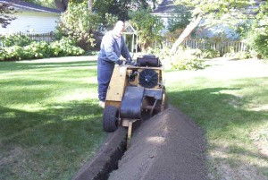 Pacocha Landscaping Services, Inc.