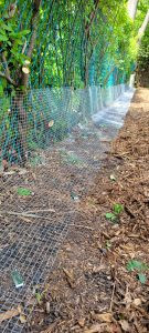Galvanized steel mesh screening installed to further improve animal control situation (per client request).
